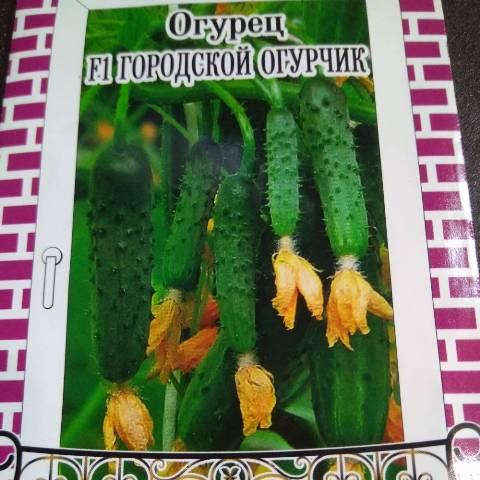 Семена огурцов для выращивания на балконе
