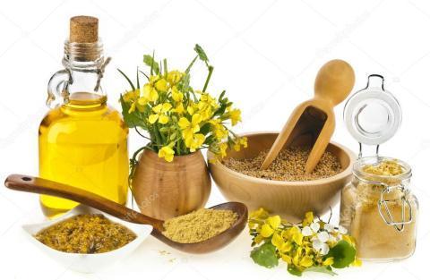 Горчичное масло: полезные свойства и противопоказания польза и вред
