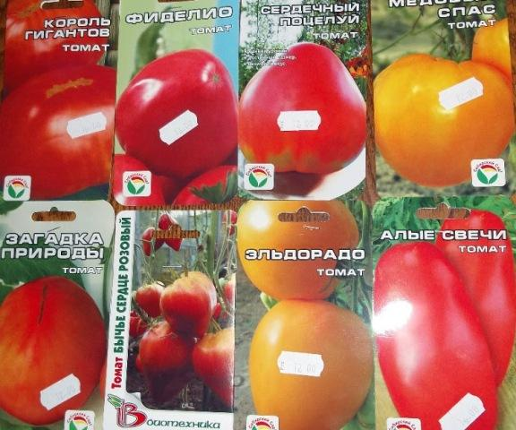 Как вырастить рассаду помидоров в домашних условиях: Семена томатов