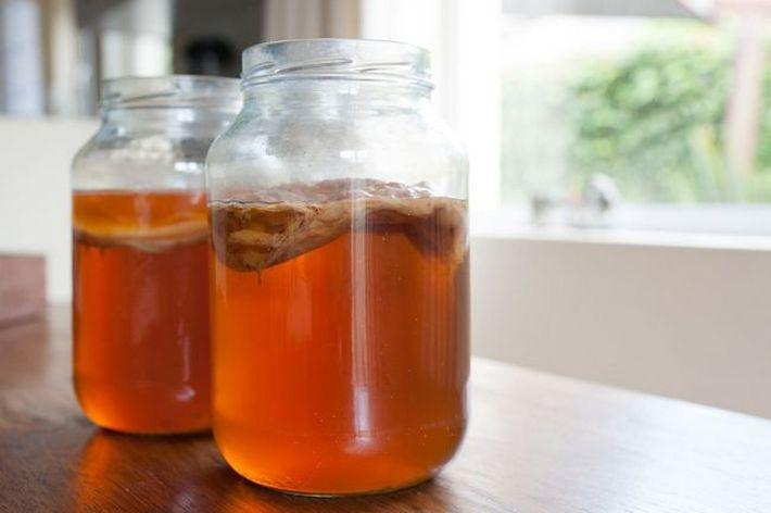 Как правильно употреблять выращенный в домашних условиях чайный гриб