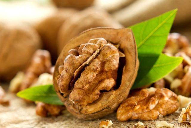 Грецкий орех: польза и вред Полезные качества грецкого ореха