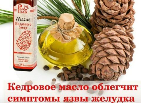 Кедровое масло для желудка