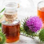 Масло расторопши: польза и вред, как принимать