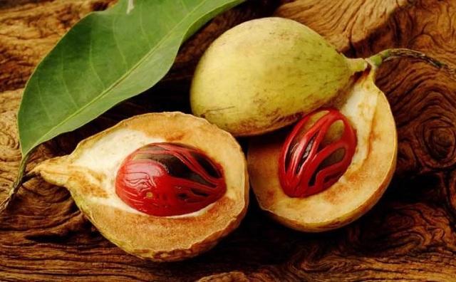 Мускатный орех в косметологии