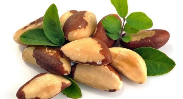 Бразильский орех: полезные свойства