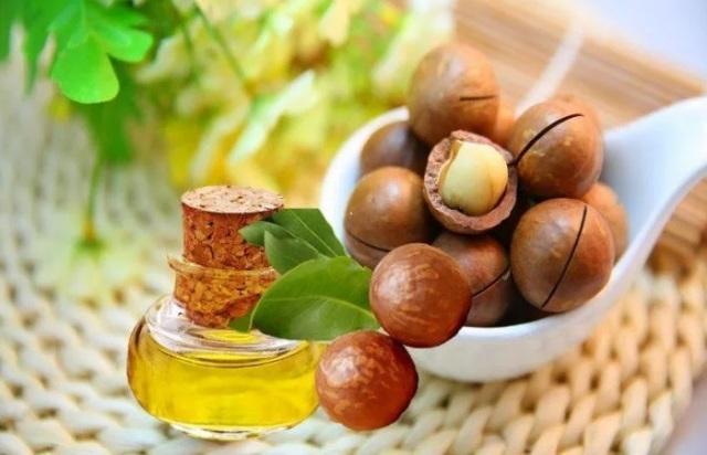Полезные свойства масла макадамии
