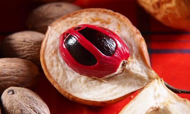 Свойства мускатного ореха