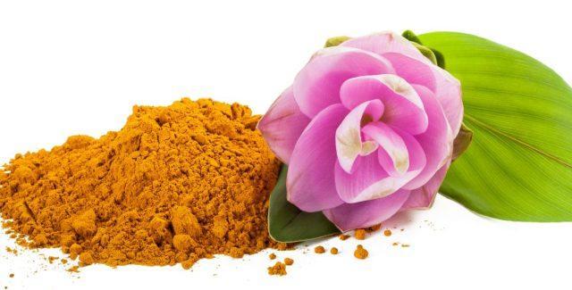 Куркума: лечебные свойства и противопоказания