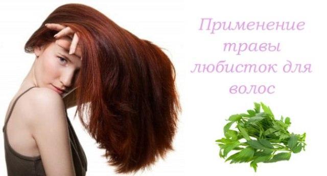 Любисток: лечебные свойства для женщин
