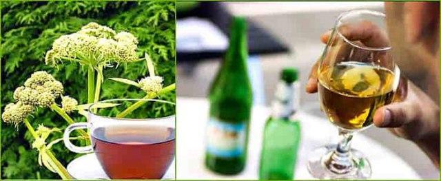 Любисток: рецепт от алкоголизма