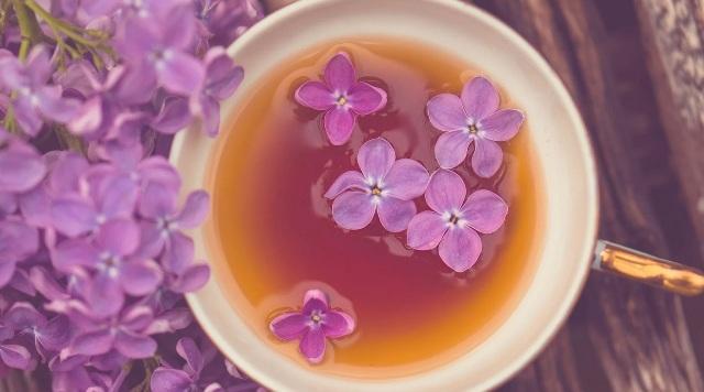 Цветы сирени: лечебные свойства и противопоказания. Рецепты