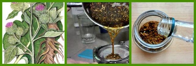Рецепт настойки корня лопуха
