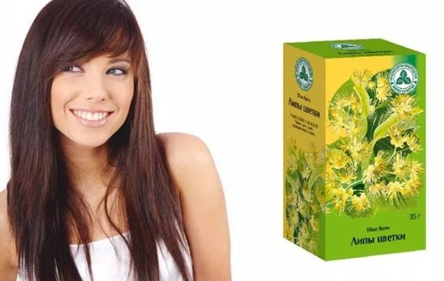 Липовый цвет: лечебные свойства от бессоницы