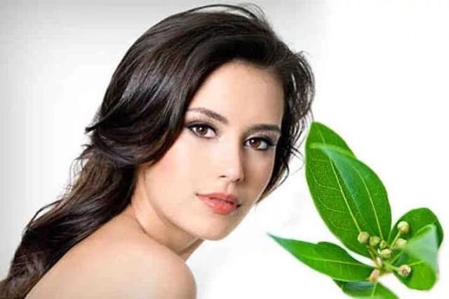 Лавровый лист: лечебные свойства и противопоказания для волос