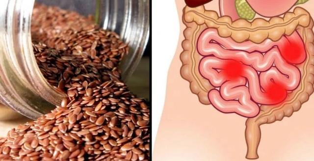 Семена льна: польза и вред как применять для кишечника и желудка