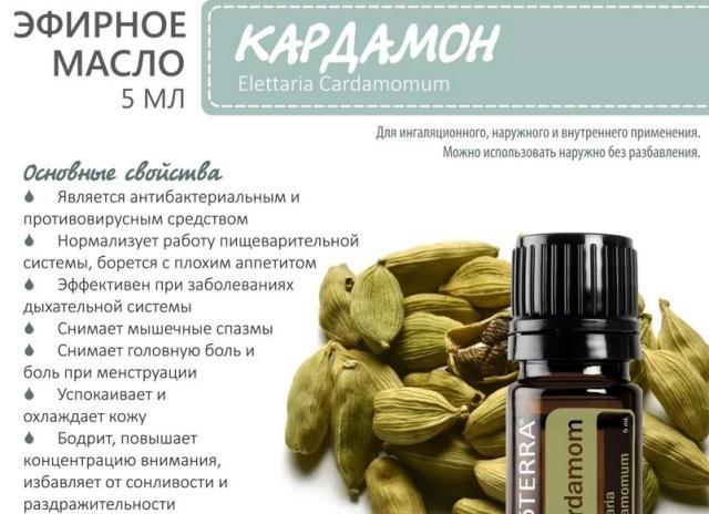 Масло кардамона: полезные свойства и противопоказания
