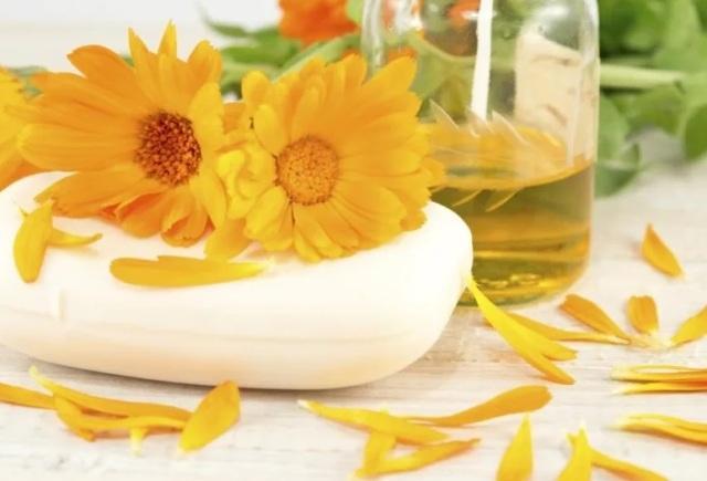 Лечебные свойства календулы и противопоказания: Масло