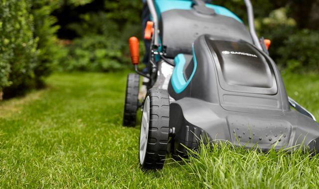Электрическая газонокосилка: какую выбрать