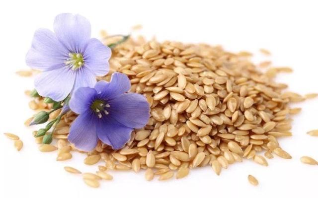 Как принимать семена льна для похудения? Диета с семенами льна