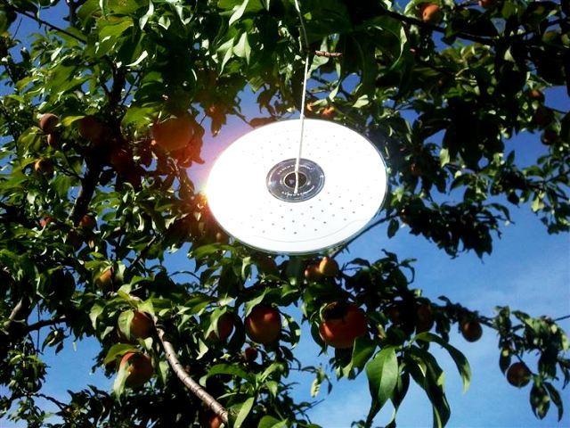 Блестящие отпугиватели от птиц из дисков