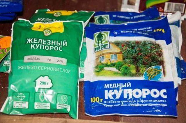 Медный купорос для смородины  осенью от вредителей и болезней