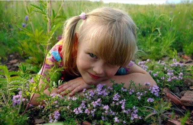 Польза и вред чабреца для детей