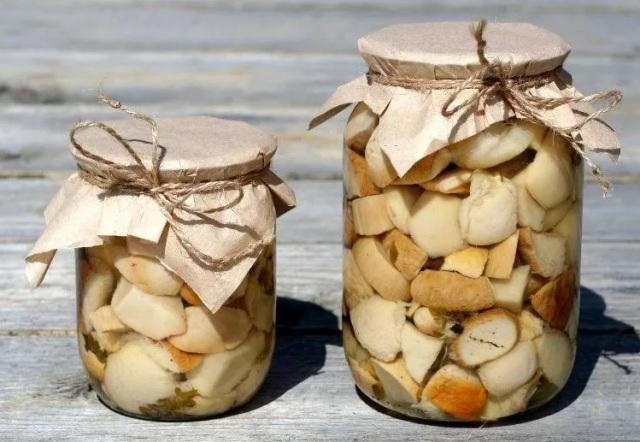Как замариновать белые грибы на зиму в банках