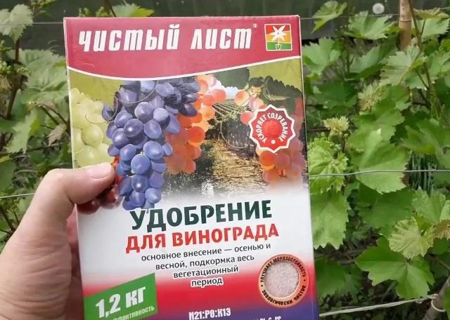 Когда подкормить укрывать виноград на зиму