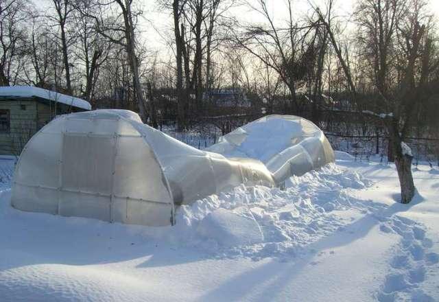Как и зачем подготовить теплицу из поликарбоната к зиме
