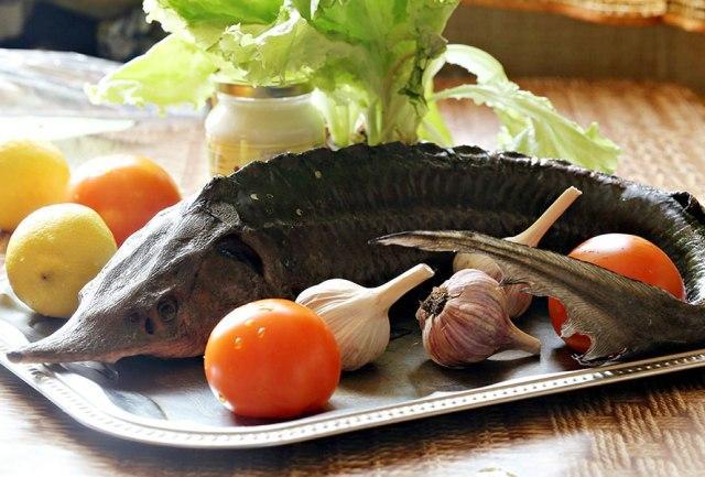 Какая речная рыба самая полезная