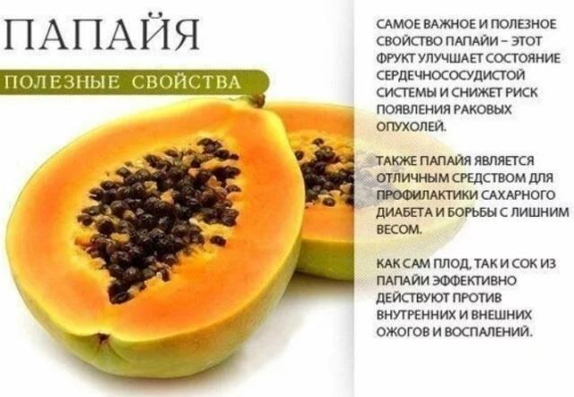 фрукт папайя: полезные свойства