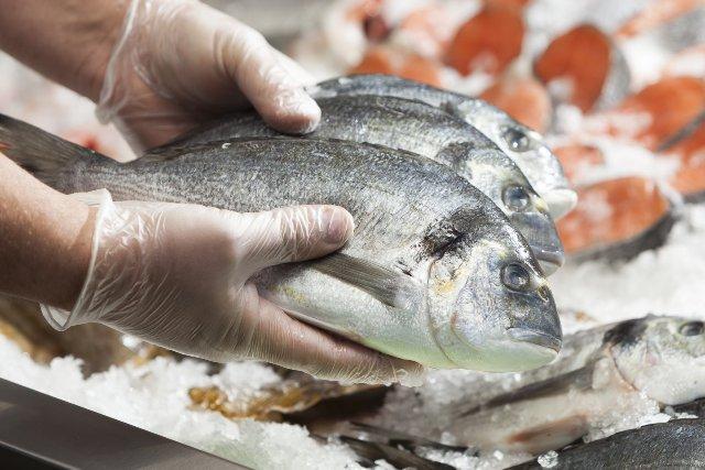 Какая рыба самая полезная: как выбрать