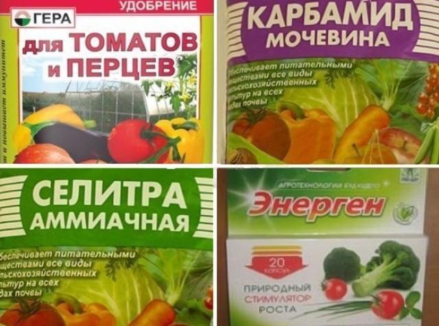 Чем подкормить томатов и перцев
