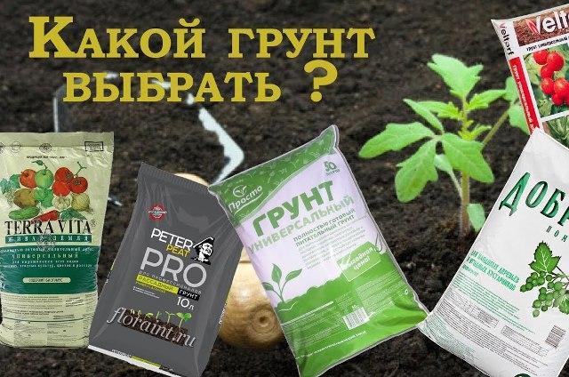 Как подготовить землю для рассады