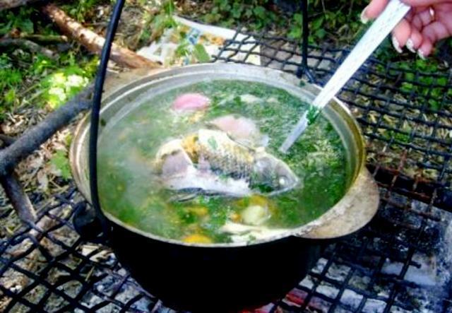 Как варить рыбу правильно