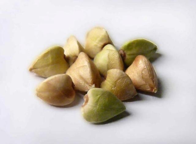 Чем отличается зеленая гречка от обычной