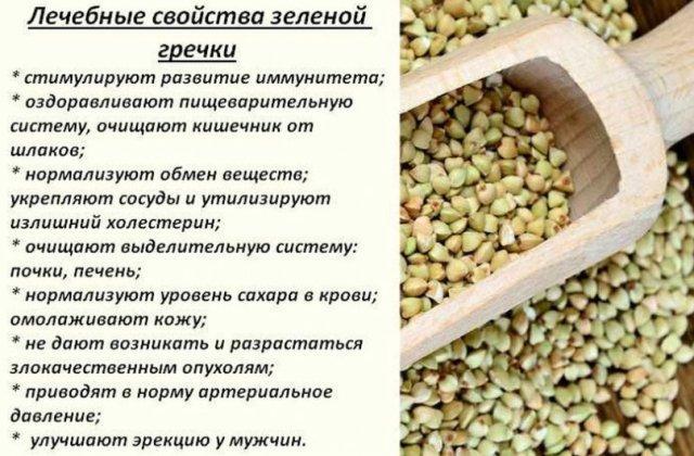 Лечебные свойства зеленой гречки