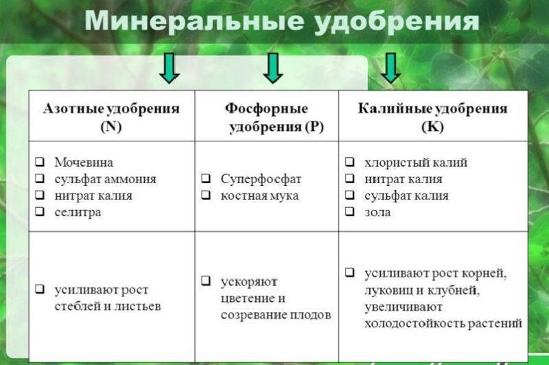 4-14.jpg