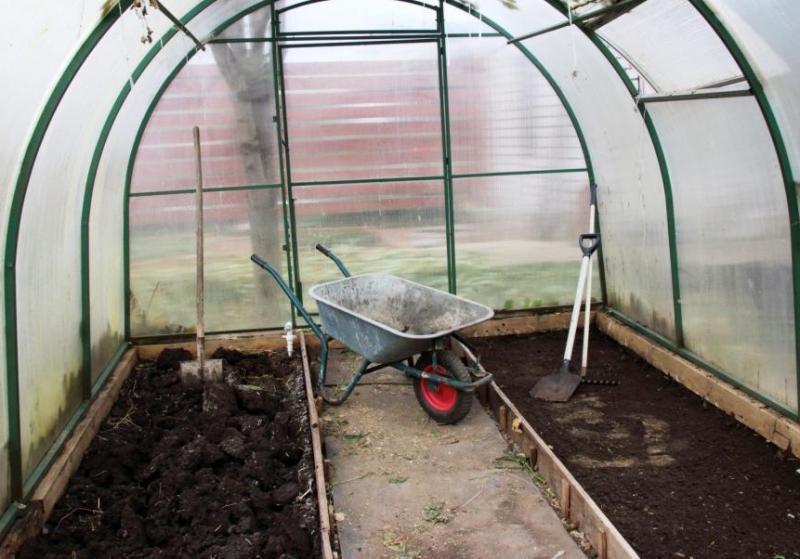 Чем  и как удобрить землю в теплице весной перед посадкой