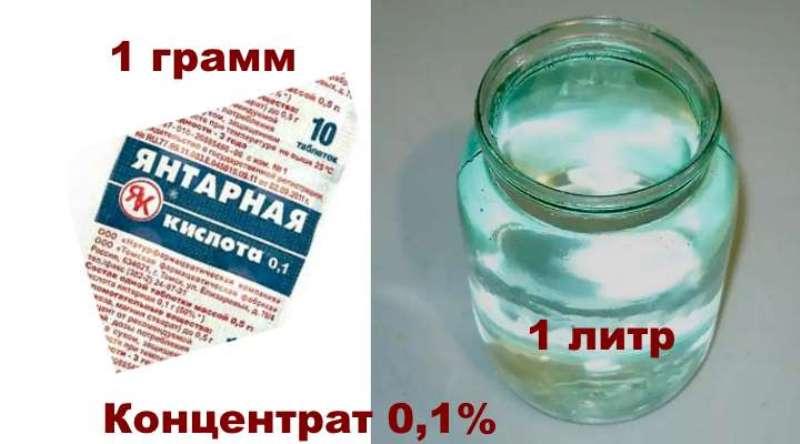 Янтарная кислота в таблетках: применение