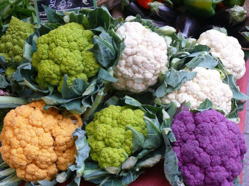 Как выращивать цветную капусту в открытом грунте