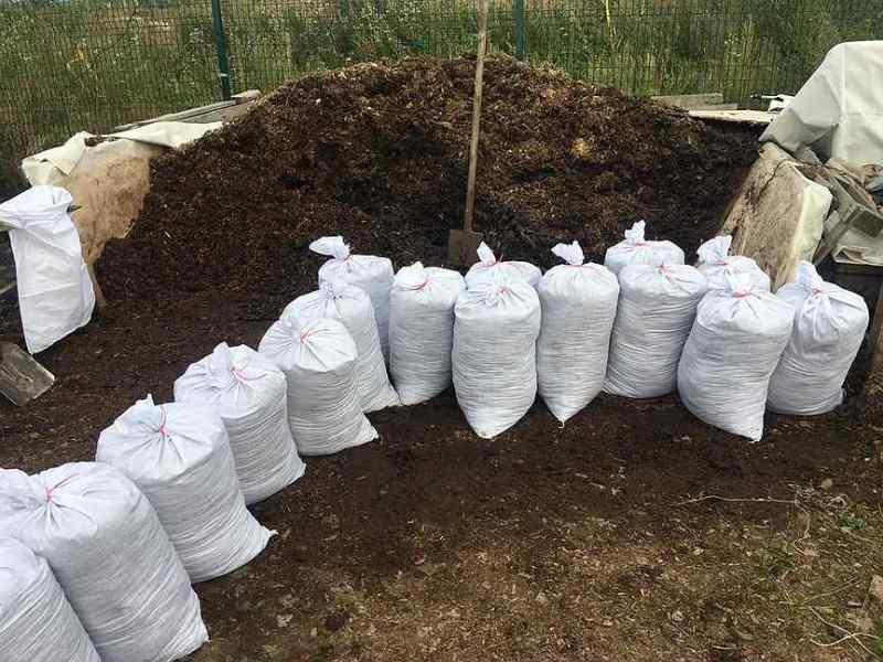 Как использовать опилки для огорода