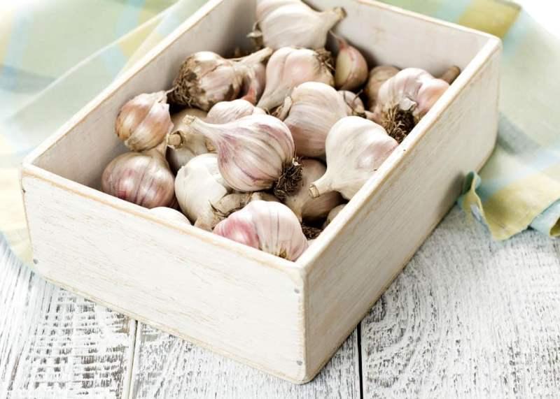 Как хранить чеснок в домашних условиях
