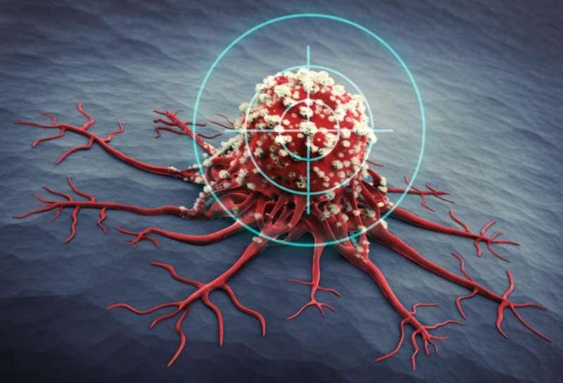 какие продукты убивают раковые клетки в организме человека