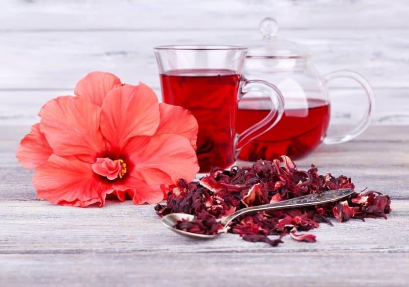 Чем полезен чай каркаде из суданской розы