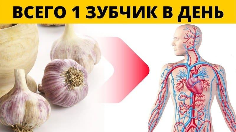 какие продукты убивают раковые клетки в организме человека чеснок