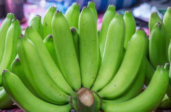 Чем полезны зеленые бананы