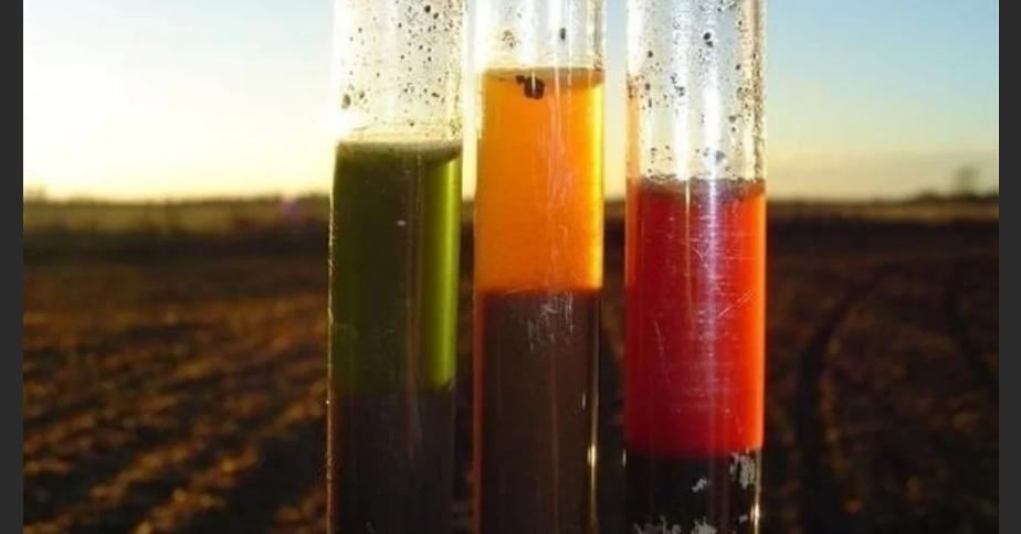 кислотность почвы и плодородие