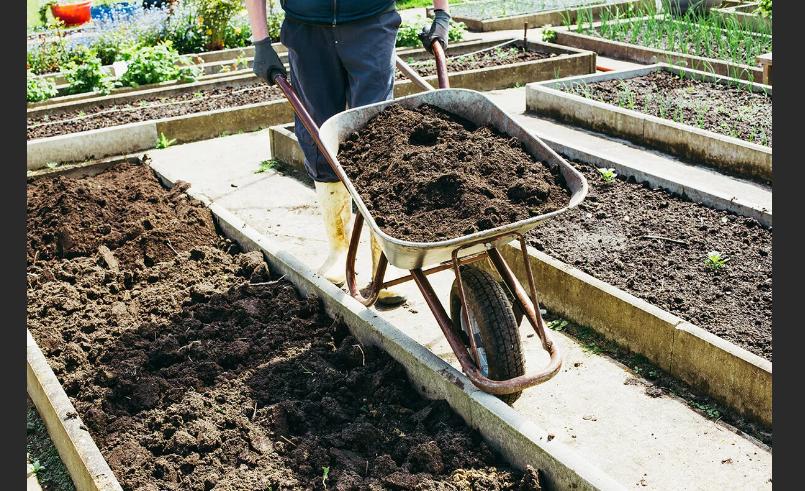как улучшить состав почвы на участке