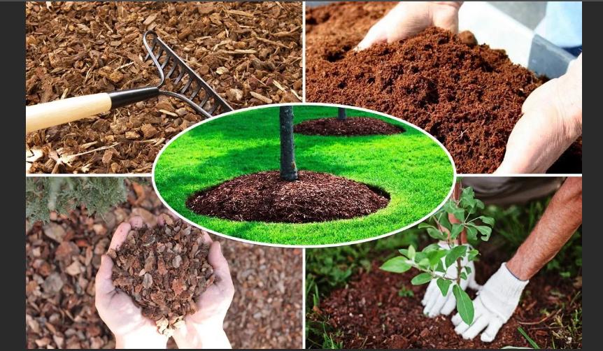 подкисление почвы мульчей